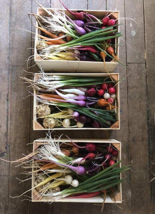 Méli-mélo de mini-légumes du moment - 3 colis 30x20cm