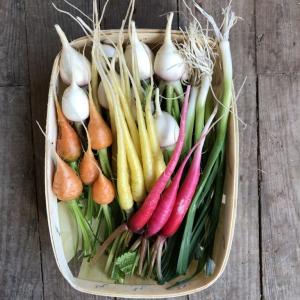 Barquette mini légumes à poêler