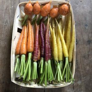 Barquette de mini-légumes à croquer
