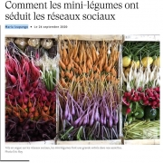 Article de Maria Izapango dans Madame Figaro, le 24 septembre 2020 : Comment les mini légumes ont séduit les réseaux sociaux?